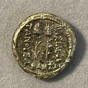 TANUSA (220 – 210 B.C.) - Ancient Replicas - ancientreplicas.co.uk
